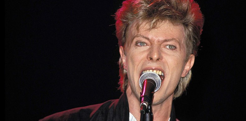 David Bowie has 'no plans for live dates' following reports of lucrative London gig offer